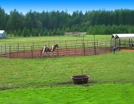 Round Pen in use