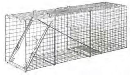 Single Door trap no combo